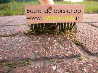 http://www.borstelwerken.nl/onkruidborstel-voorkant.jpg